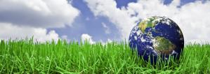 lichtisleven aarde in gras