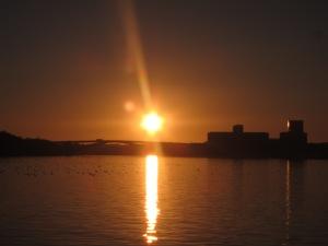 lichtisleven stockholm 03-2014 (501)