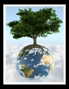 lichtisleven aarde boom