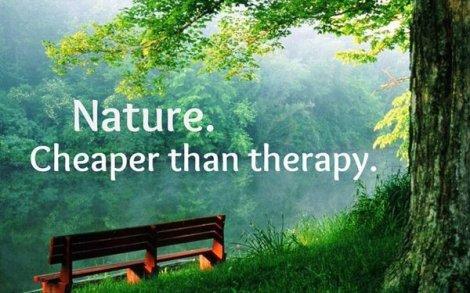 lichtisleven nature therapy