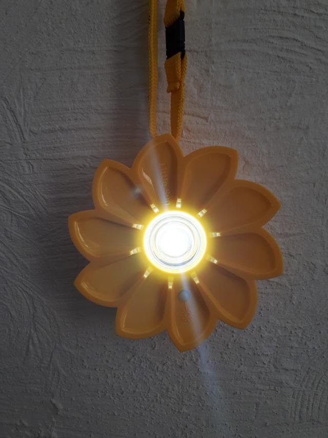 Maak Licht zonder Elektriciteit | LICHT is LEVEN