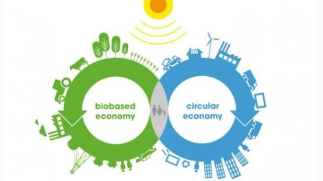 circulaire-economie-705x397