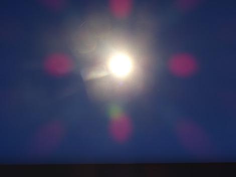 lichtisleven 46-2017 zonnig 20185
