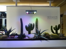 lichtisleven 09-2018 highlights&building 2018112